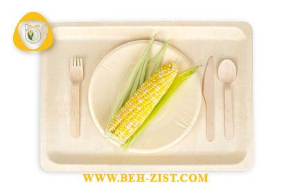 Disposable vegetable disposable biodegradable